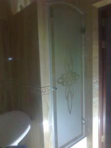 Двери в душевую нишу с рисунком частично прозрачная